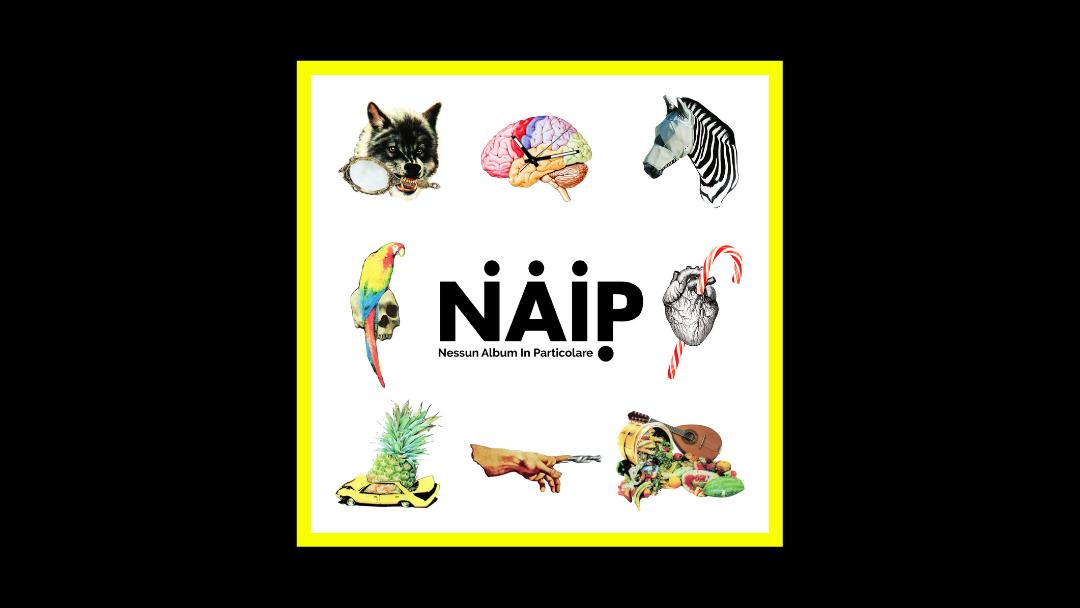 N.A.I.P. – Nessun Album In Particolare