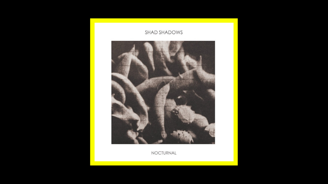 Shad Shadows – Nocturnal