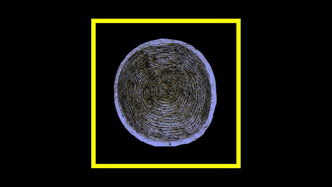 Stumpf – Stumpf