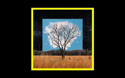 Fink – Bloom Innocence
