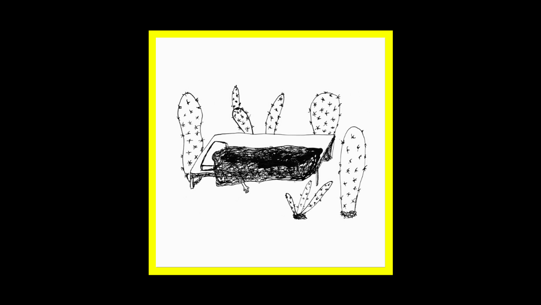 Magda Drozd - Songs for Plants Radioaktiv