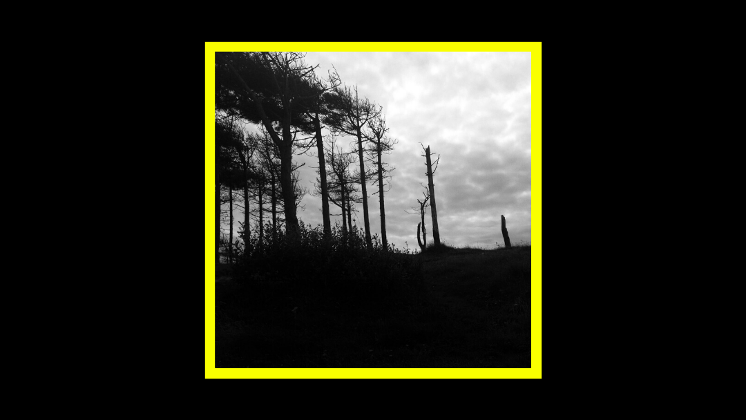 Dakota Suite & Quentin Sirjacq – The Indestructibility Of The Already Felled