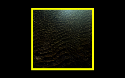 Eric Holm – Surface Variations