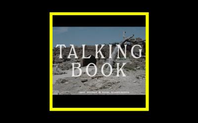 Talking Book -Talking Book II