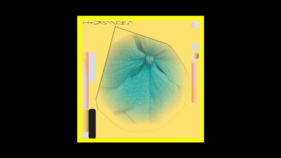 Holly Childs & Gediminas Žygus - Hydrangea Radioaktiv