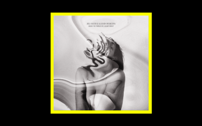 Joel Fausto & Illusion Orchestra – Inside The Throat Of A Giant Insect