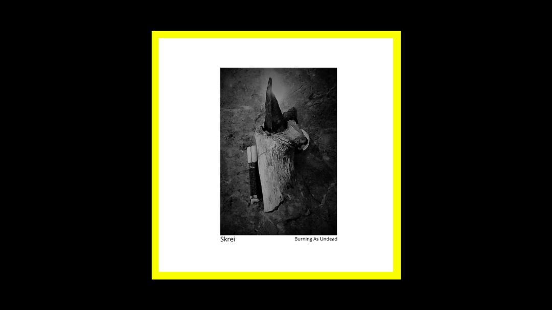 Skrei - Burning As Undead Radioaktiv