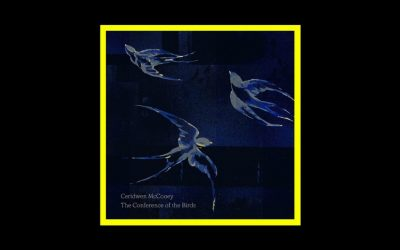 Ceridwen McCooey – The Conference of the Birds