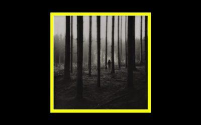 Abraham Fogg – Metamorphosis