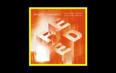 Mauro Gargano – Feed