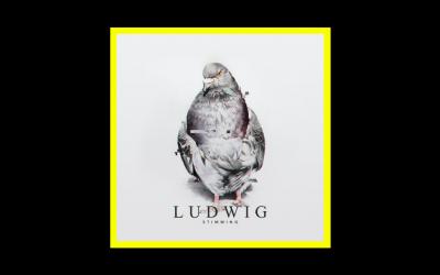 Stimming – Ludwig